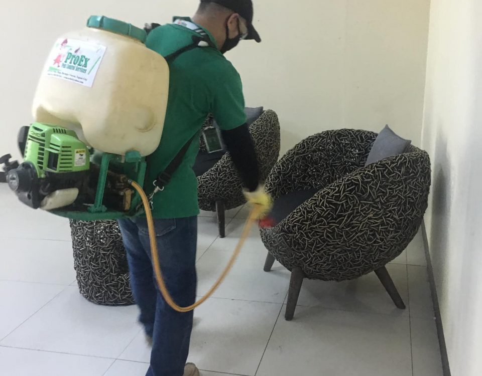 Disinfection Service through misting process to prevent bacteria and viruses cau...