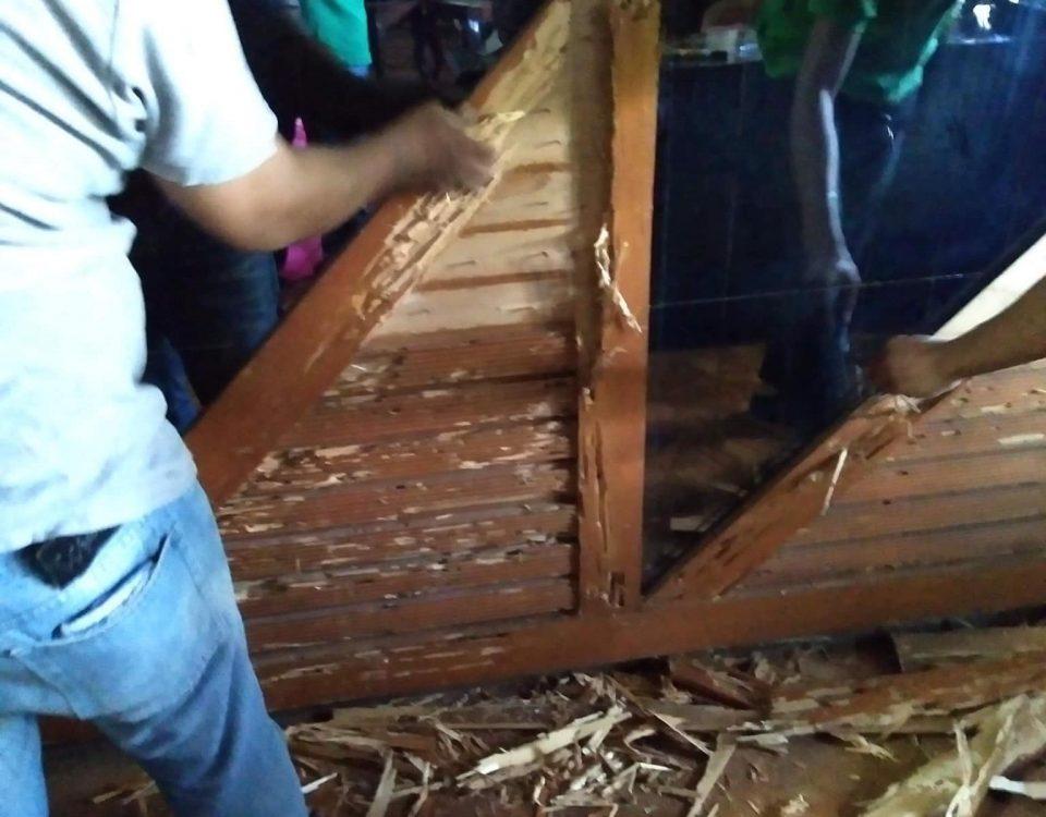 Drywood Termites damaged!
