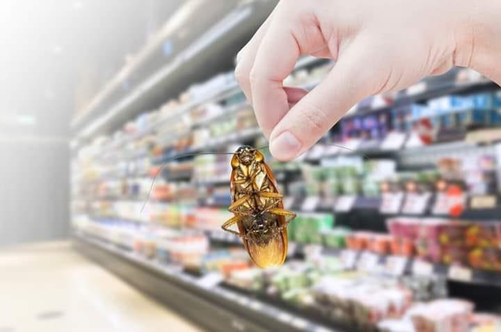 Eliminate the pest!  May grocery store ba kayo? Wag nyo hayaan sirain ang mga ...
