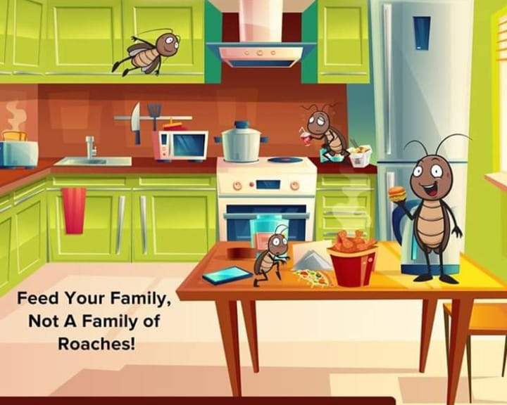 Feed your family. Not a Family of Cockroaches. Get Rid of Cockroaches fast with ...