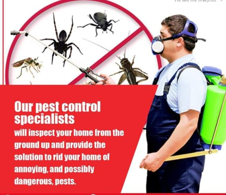ProEx Pest Control Services deploys state-of-the-art equipment for effective Pes...
