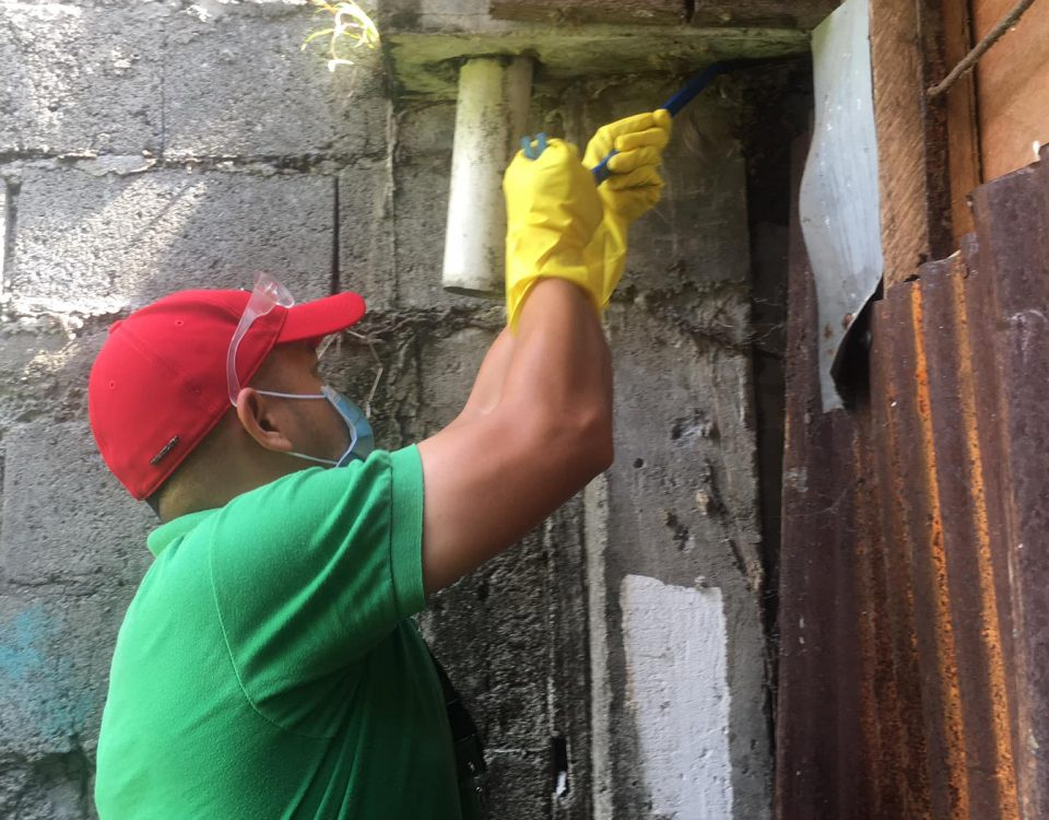 Termite Control Treatment (TCT)   Conducted injection method, spraying and dusti...