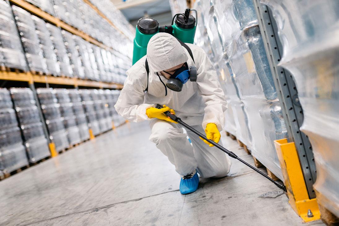 Industrial Pest Control in Tagum