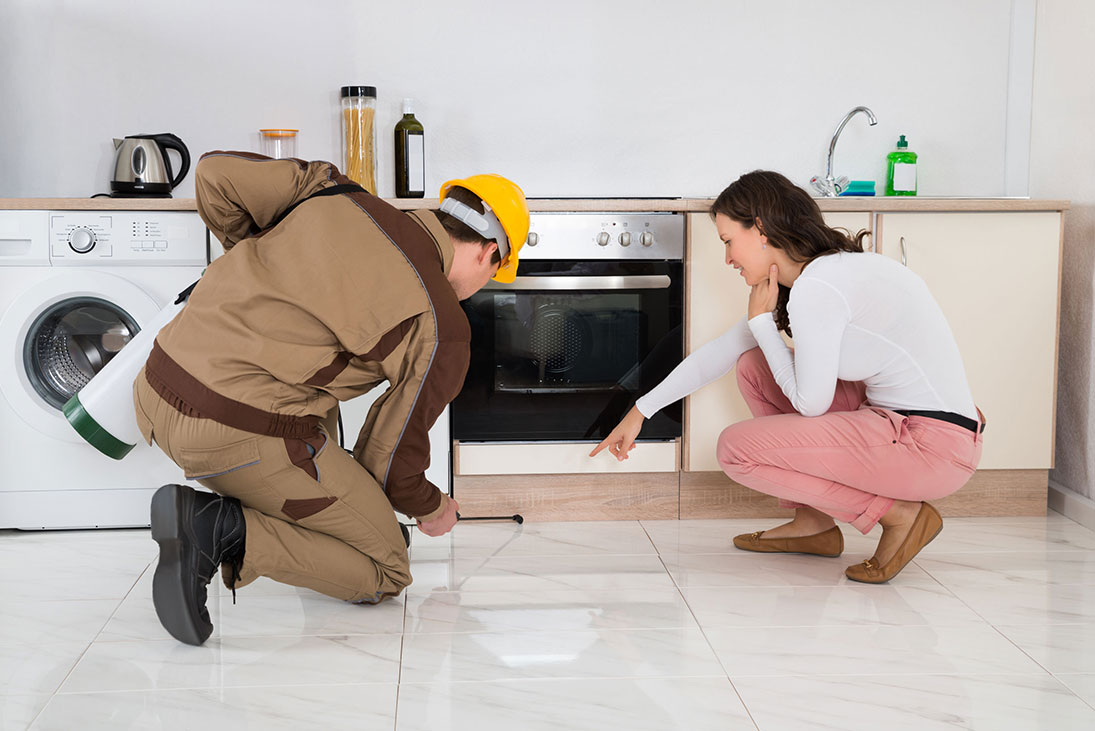Residential Pest Control Services in Tagum City