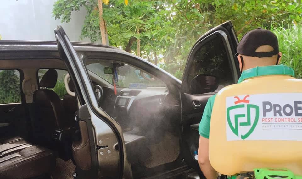 Car Disinfection Service