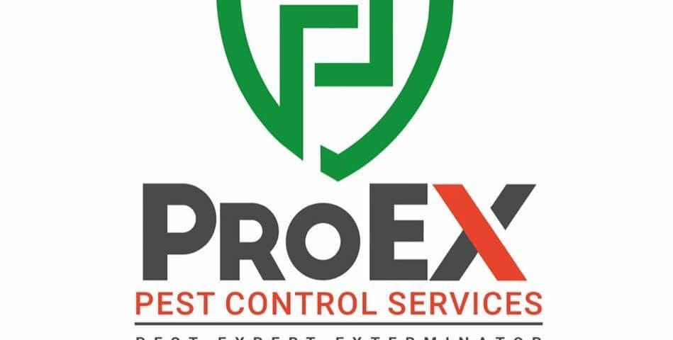 For Disinfection and Pest Control Service   Please contact us at 0966-7031064 (G...