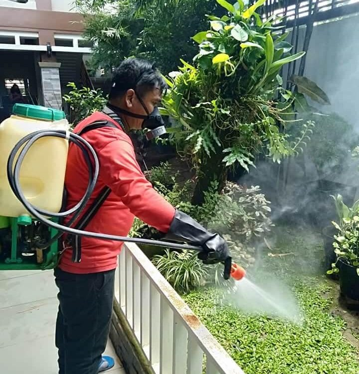 Misting process of treatment to control all crawling and flying insect pests.