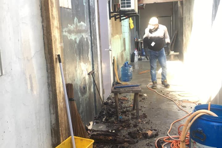 Drilling on cemented floor for injection of termiticide and applied powder termi...