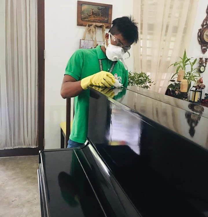 Termite Treatment  Using Termiticide Powder.  #piano #protectyourproperty  Conta...