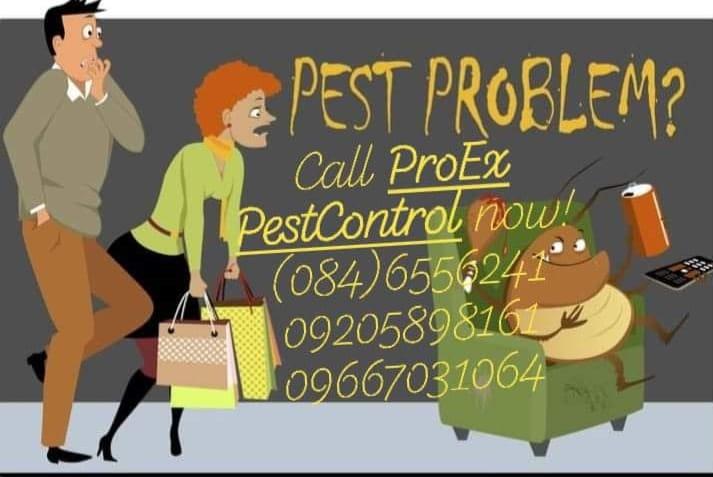 "ProEx Pest Control Services  ""Pest Expert Exterminator""  DAGA,IPIS,LAMOK,ANAY,LA..."